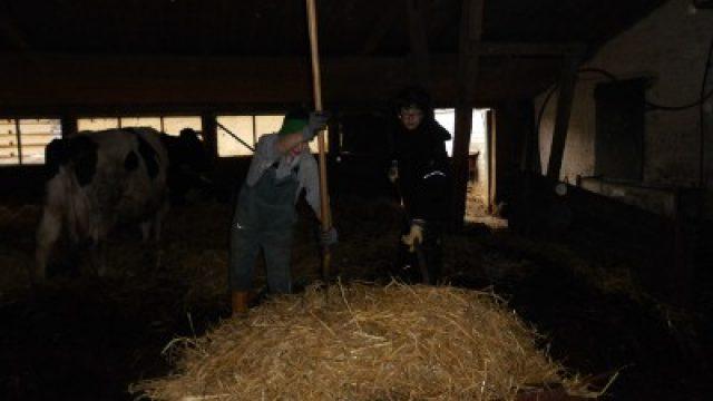 Landbaupraktikum auf dem Bauckhof