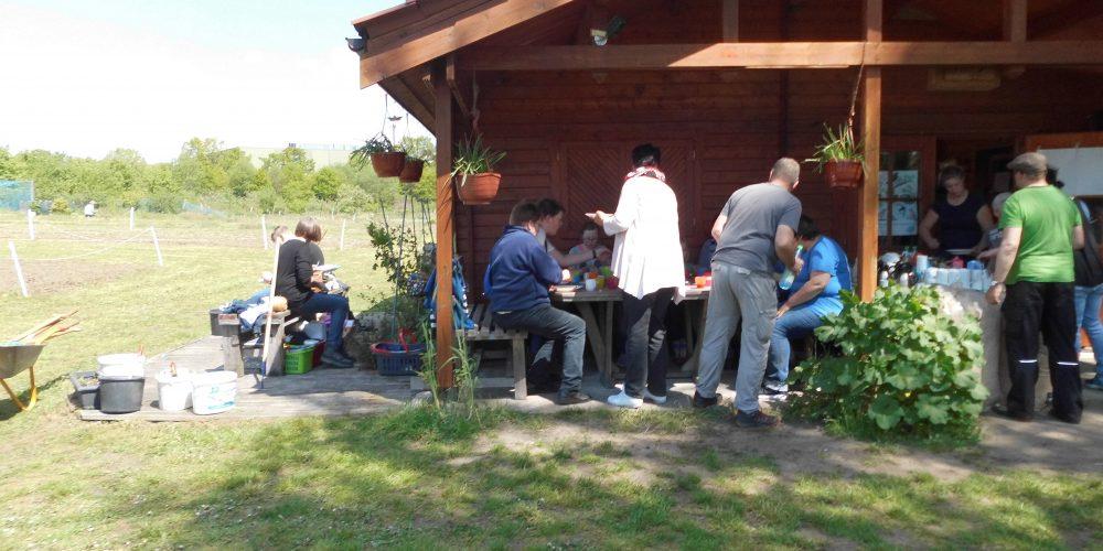 Elternarbeit im Schulgarten