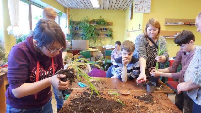 Dr. Kruse-Heim Stellichte und Ita Wegman Schule Benefeld kooperieren