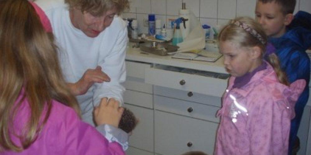 Als die vierte und achte Klasse im Oktober einen Igel rettete