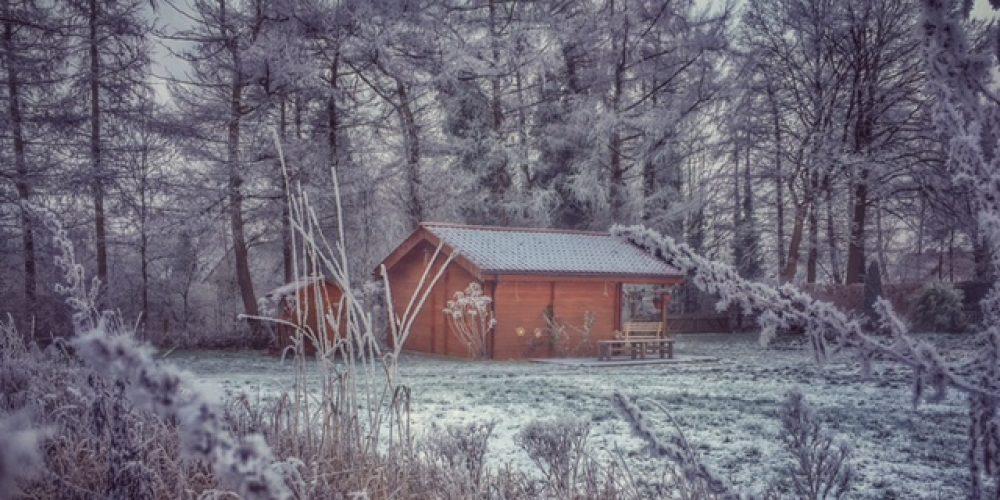 Winter im Schulgarten